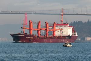 Photo of ZEYNEP KIRAN ship