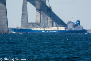 Photo of BALTIC PILGRIM ship