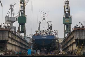 Photo of BULK CARRIER ship