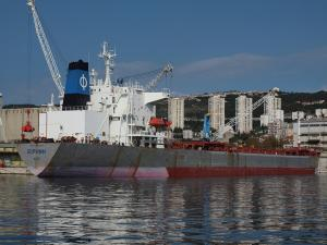 Photo of GLOBAL TRADER_1 ship