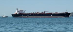 Photo of GREEN TRADER ship