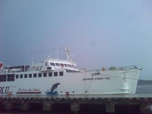 Photo of DHARMA FERRY VIII ship