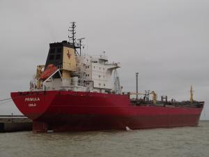 Photo of PRIMULA ship