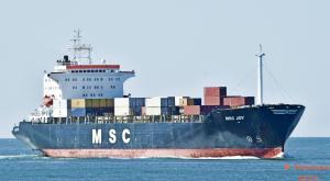 Photo of MSC JOY ship