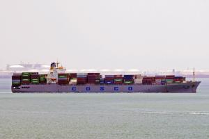 Photo of LUZHANYU590 ship