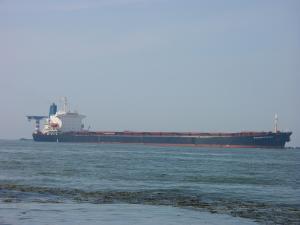 Photo of CARMELIA ship