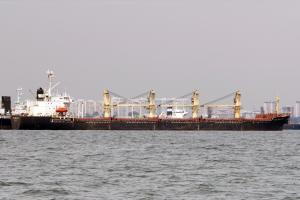 Photo of M/V GOLDEN SEA ship