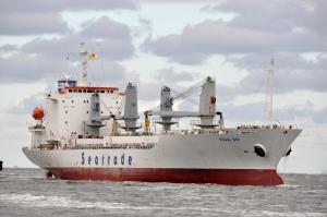 Photo of REGAL BAY ship