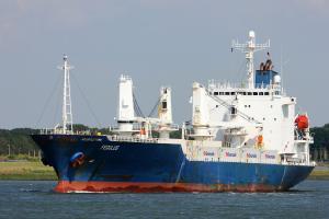 Photo of FEGULUS ship