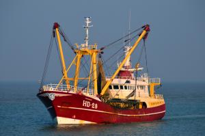 Photo of HD29 MORGENSTER ship