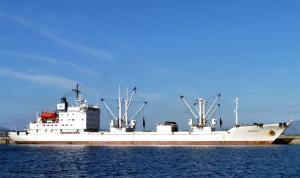 Photo of ARKADIJA ship