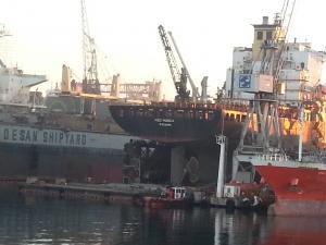 Photo of MSC MONICA ship