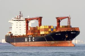 Photo of MSC HINA ship