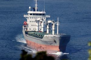 Photo of AREL 1 ship