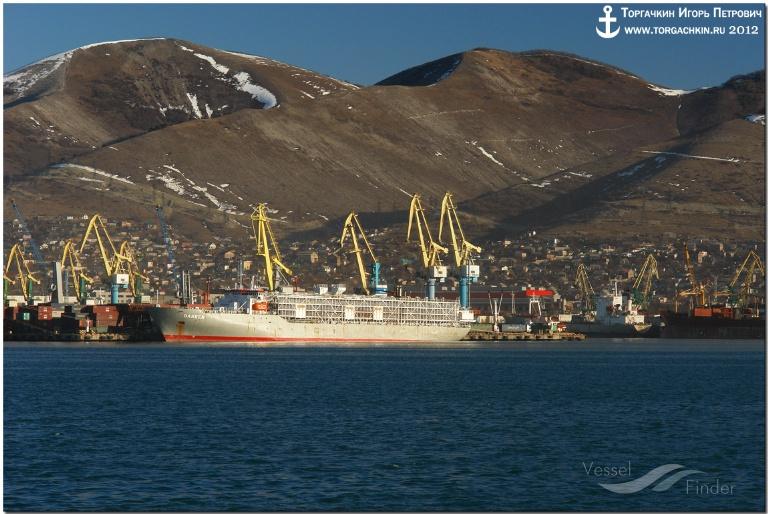 DAREEN (MMSI: 353518000) ; Place: Port Novorossiysk, Russia.