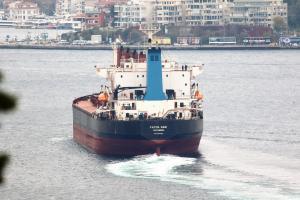 Photo of FATMA SARI ship