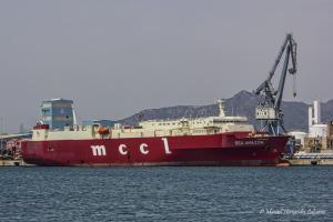 Photo of SEA AMAZON ship
