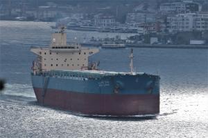 Photo of WADI ALARAB ship