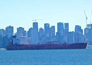 Photo of CHAMPION TIDE ship