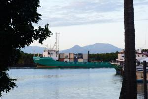 Photo of TOLL WARRENDER ship