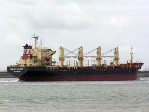 Photo of RAULI N ship