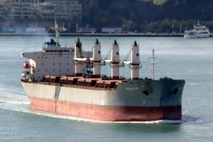 Photo of MV  PARASKEVI ship