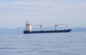 Photo of AMIRA JASMINE ship