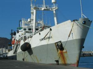 Photo of HUMPBACK WHALE ship