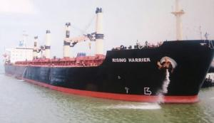 Photo of RISING HARRIER ship