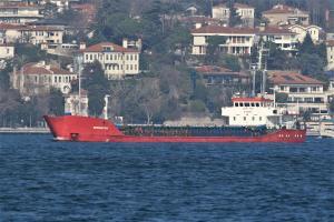 Photo of DENIZHAN TRIO ship