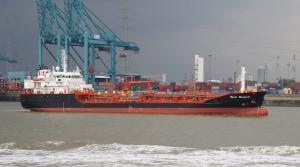 Photo of STOLT SEAGULL ship