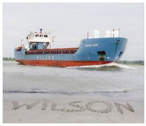 Photo of WILSON SAAR ship
