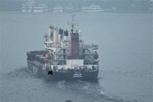 Photo of ANA-M ship