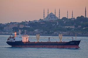 Photo of BOGDAN ship