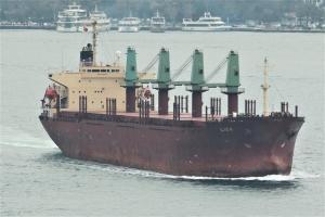 Photo of LION ship