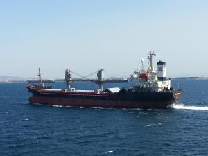 Photo of DERYA AYTEKIN ship