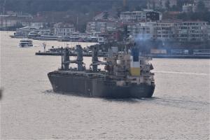 Photo of M\V LAPIS ship