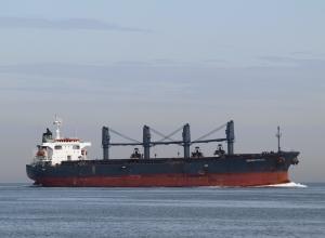Photo of STELLA T ship
