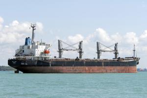 Photo of ANNA M ship