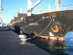 Photo of AROSA ship