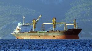 Photo of PRINCESS LAYLA ship