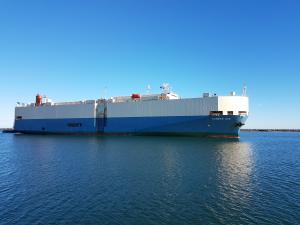 Photo of COSMOS ACE ship