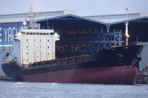 Photo of BAOHANG ship