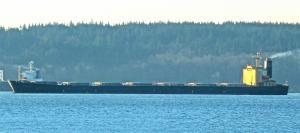 Photo of UNICO STELLA ship