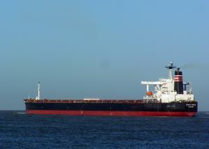 Photo of CAPE OSPREY ship