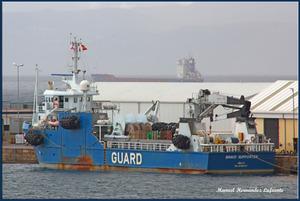 Photo of BRAVO SUPPORTER ship