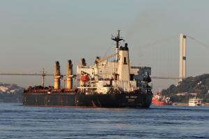 Photo of SEA ARROW ship