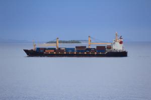 Photo of SOUTHERN MOANA ship