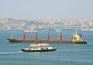 Photo of TAMREY S ship