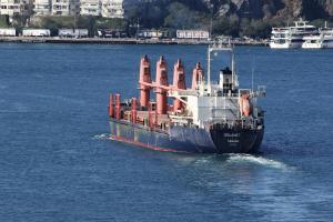 Photo of SELAMET ship